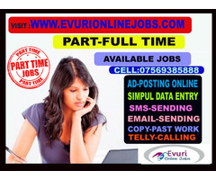 Freelancer Part Time Home Based Jobs - Image 1/2