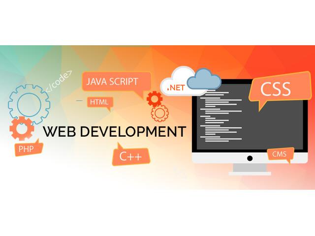 Web Development Company in Ambala, Haryana - 3/6