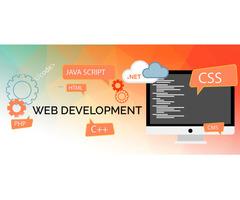 Web Development Company in Ambala, Haryana - Image 3/6