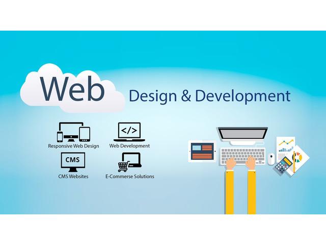 Web Development Company in Ambala, Haryana - 5/6