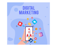 Best Digital Marketing Agency SEO SMO Company In Chandigarh - Image 4/7