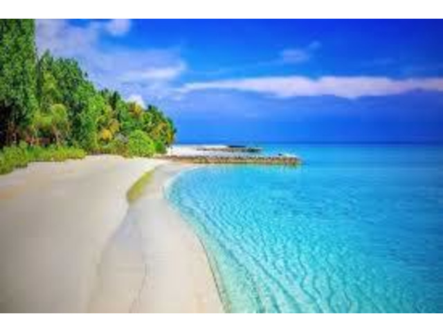 Andaman Short Tour Package - 3/3