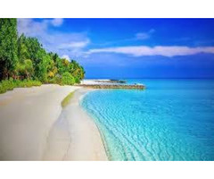 Andaman Short Tour Package - Image 3/3