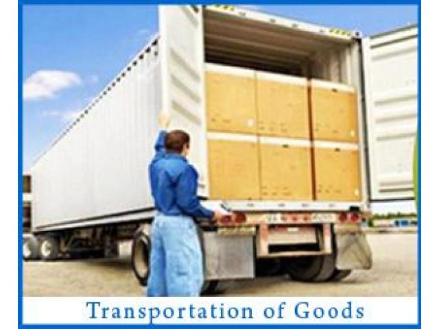 Packers and Movers in Noida and Delhi 9891868220 - 1/1